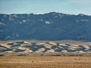 Mongolia, Gobi, Khongoryn Els